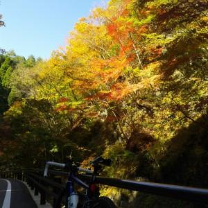 鶴峠へ-県道18号線